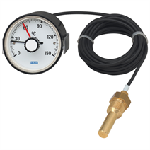 Expansion thermometer with micro switch